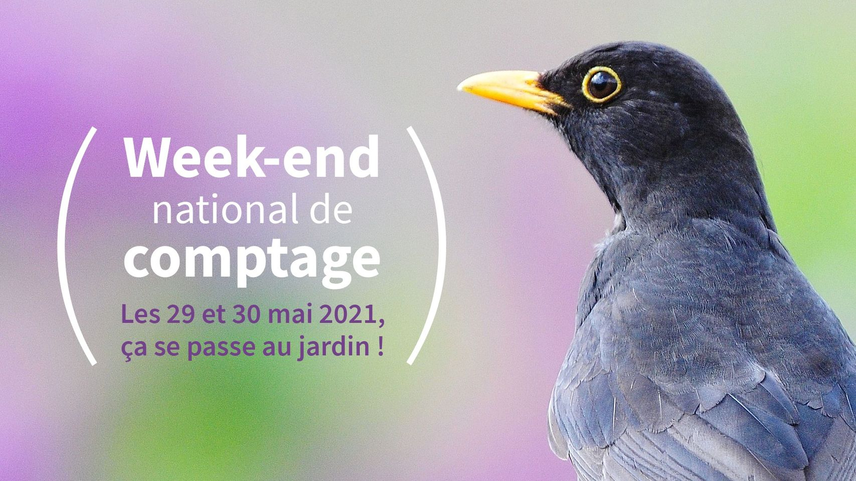 logo_week-end_comptage_2021